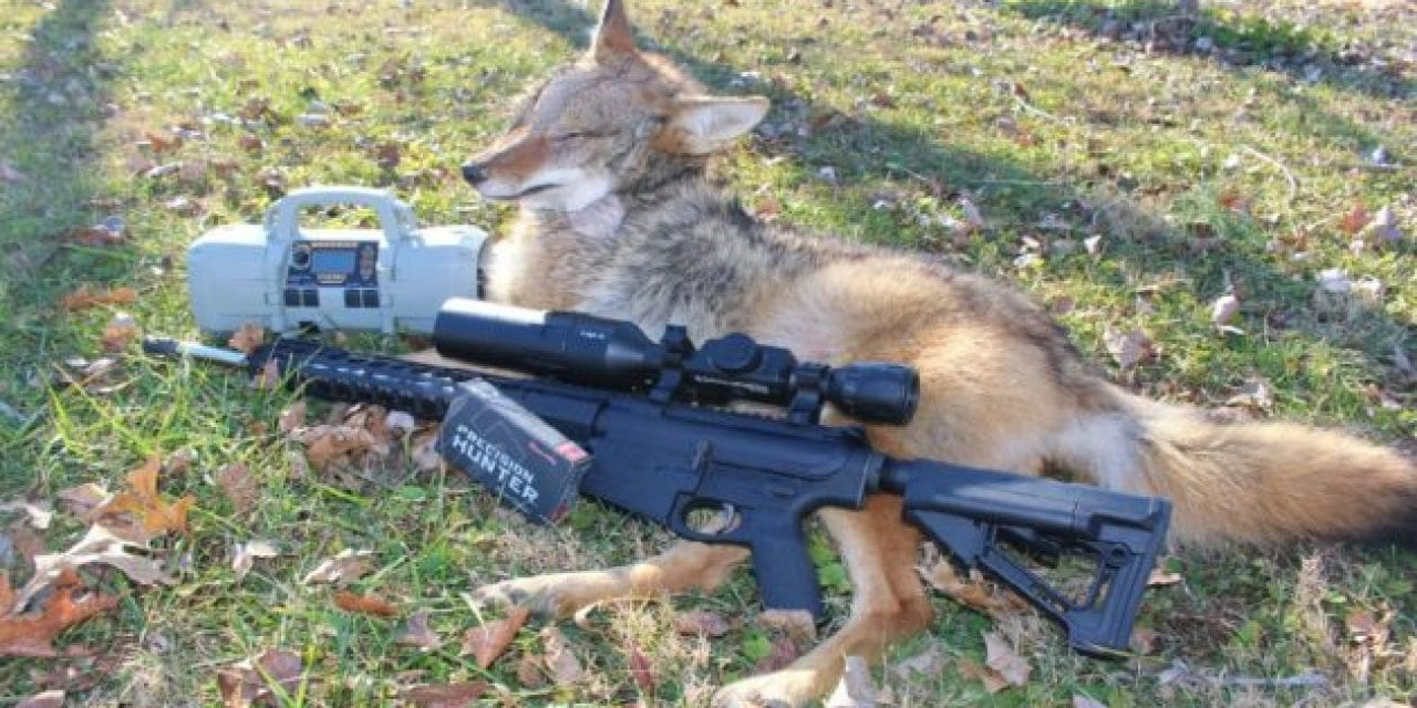 Gun Gear Review: ATN X-Sight 4K Pro Scope and Palmetto State