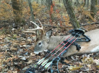 Low-Profile Tactics for Public-Land Hunting