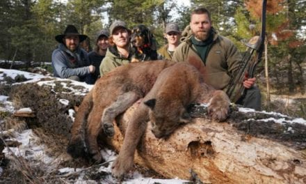Oregon Lawmakers Advance Bills Allowing Predator Hunting With Dogs