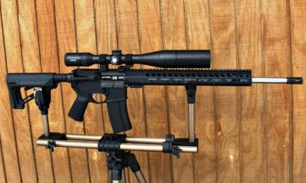 Palmetto State Armory 224 Valkyrie and Hawke Endurance Scope Review
