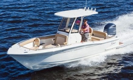 Scout Boats: 7 Saltwater Fish that are Great for Winter Anglers