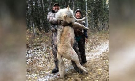 Stupid Things Anti-Hunters and Animal Rights Zealots Say, Part I