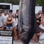 Teen Catches Potential World-Record Blue Marlin