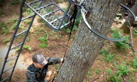 Tree Stand Buddy Acquires Skyline Safety System