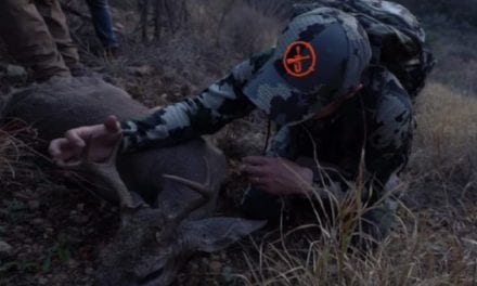 Video: LunkersTV Shows Just How Tough Hunting for Coues Deer Really Is