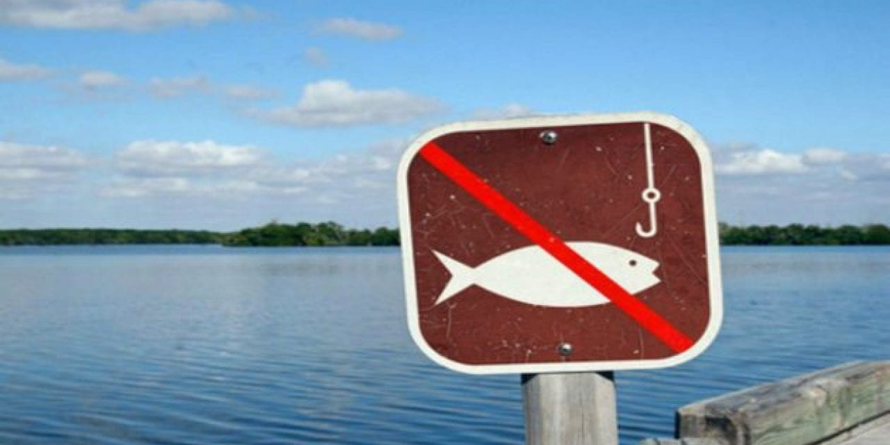 10 Weirdest Fishing Laws You Didn't Know About