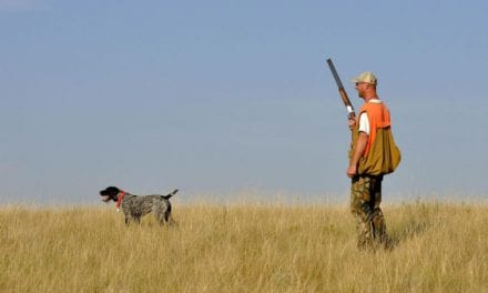 The Upland Hunter's Ultimate Bucket List