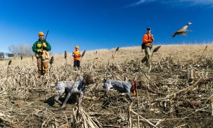 The Value of Controlled Hunts