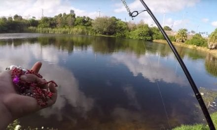 Video: Angler Uses DIY Lure Made From Valentine's Day Decorations