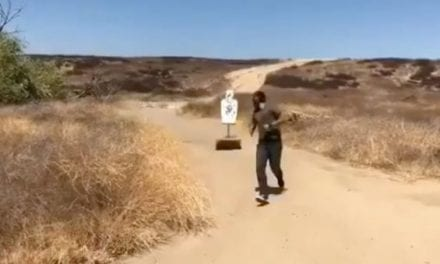 Video: Think You Could Hit a Target That Chases You?