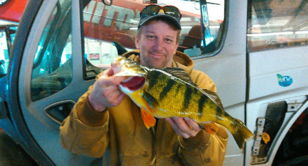 Iowa Perch Big Enough for State Record, But Some Disagree