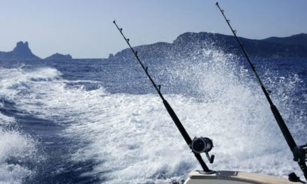 Proposed Bill Could Virtually Put an End to Sport Fishing in Puerto Rico