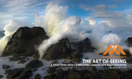 reCOMPOSE Podcast 050: The Art of Seeing, Part 1