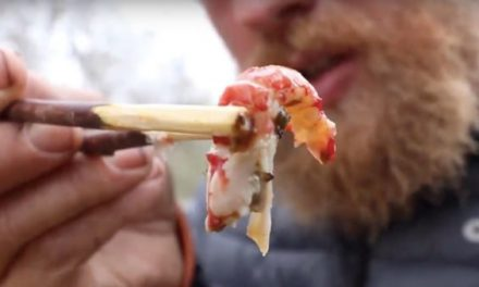 Video: How to Cook Crawfish in the Wild Using Cactus