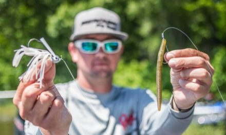 FLW – Top 10 Baits from Santee Cooper