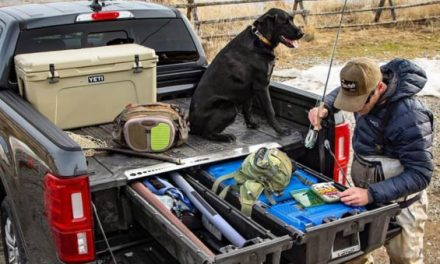 Here's Your Chance to Win a DECKED Storage System and a Walter PPQ