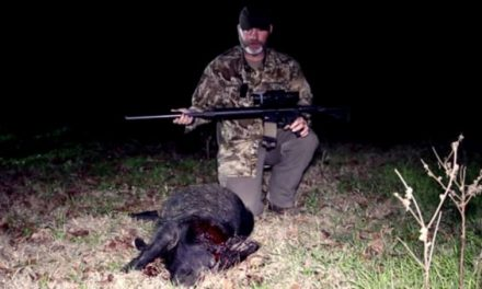 Hogs Don't Stand a Chance Against a Suppressed .50 Beowulf