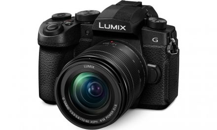 Panasonic LUMIX G95 And LUMIX G VARIO 14-140mm F3.5-5.6 II Zoom