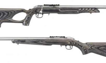 Stainless Ruger American Rimfires