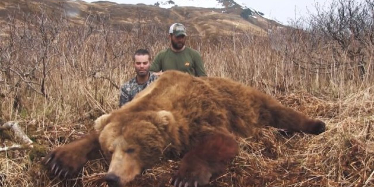Watch How One Single Predator Call Sends This Bear Running Straight into a Hunter's Scope