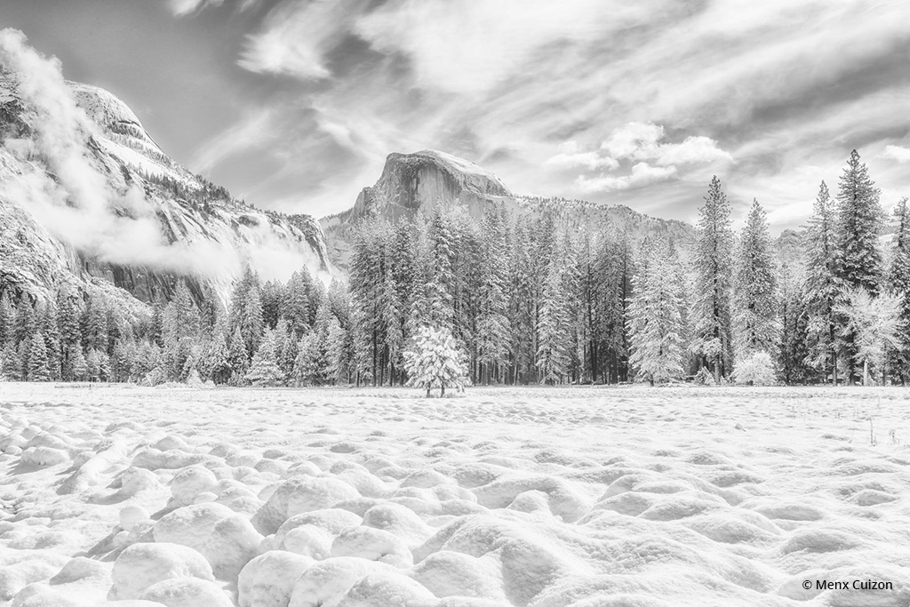 """Congratulations to Menx Cuizon for winning the recent Winter Black-And-White Assignment with the image, """"Snow White."""""""