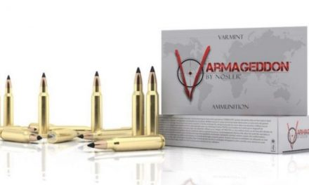 Everything You Need to Know About Nosler Varmageddon Ammo