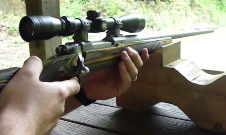 Everything You Need to Know About the Ruger Hawkeye Predator Rifle