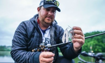 FLW – Top 10 Baits from Lake Chickamauga