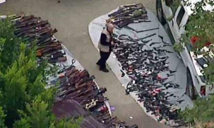 Massive Gun Collection Seized From California Home