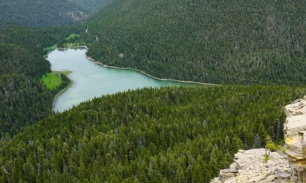 RMEF Access Project a Win for Hunters, Hikers and Wildlife