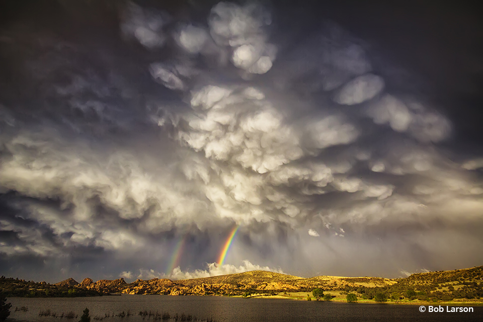 """Congratulations to Bob Larson for winning the recent Spring Showers Assignment with the image, """"Wicked Beauty."""""""