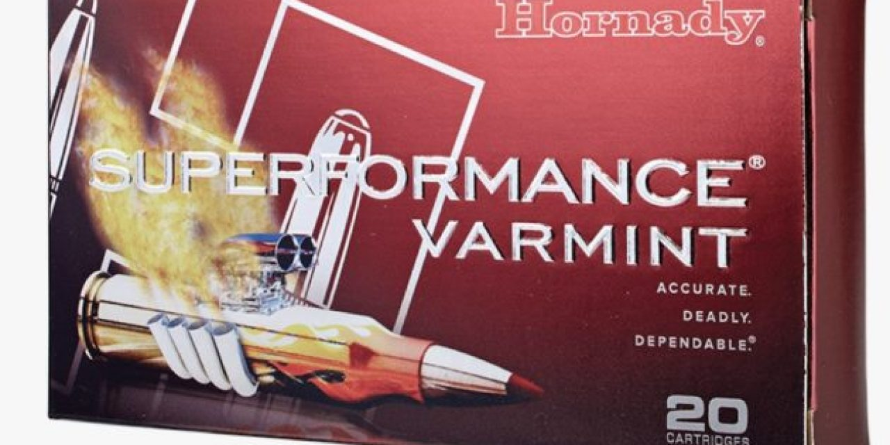 The Scoop With Hornady Superformance Varmint Ammo