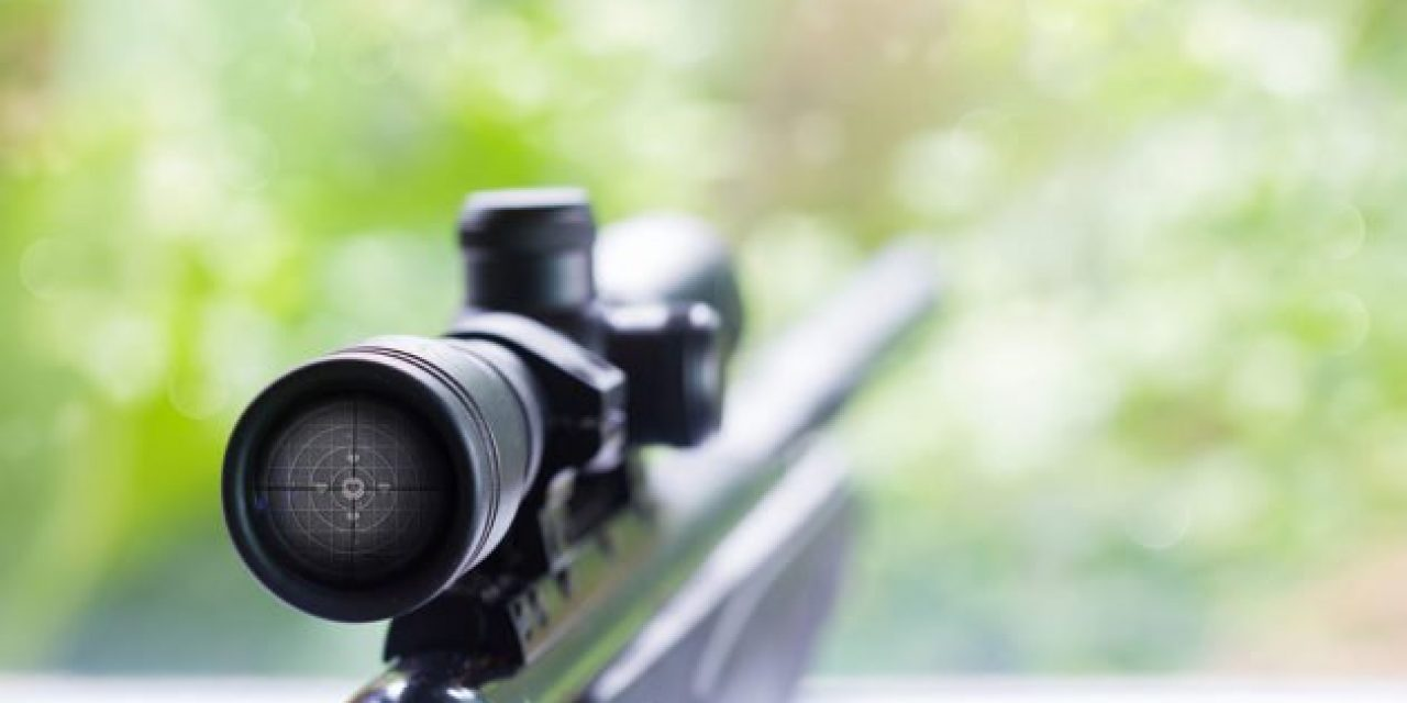 What's the Best Rifle Caliber for Deer? ⋆ Outdoor