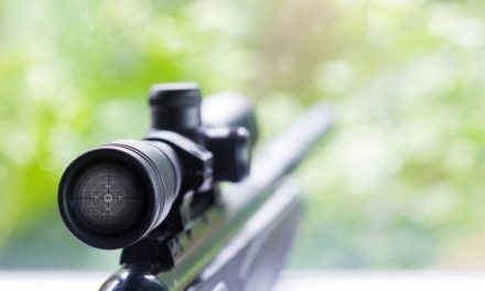 What's the Best Rifle Caliber for Deer?