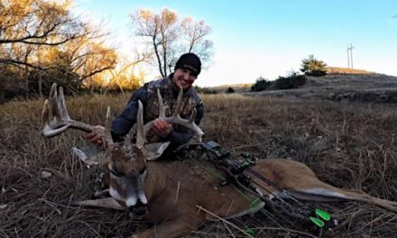 Which Are the Top States to Bowhunt for Deer?