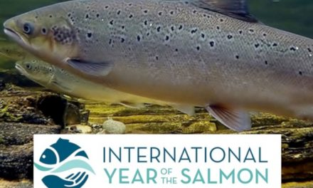"""Year of the Salmon"" – NOAA"