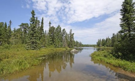 Boundary Waters Canoe Area: Everything You Wanted to Know