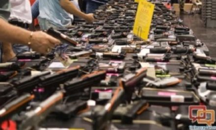FED. JUDGE ISSUES PRELIMINARY INJUNCTION AGAINST CALIFORNIA GUN SHOW BAN—SAF