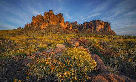 Photo Of The Day By Peter Coskun