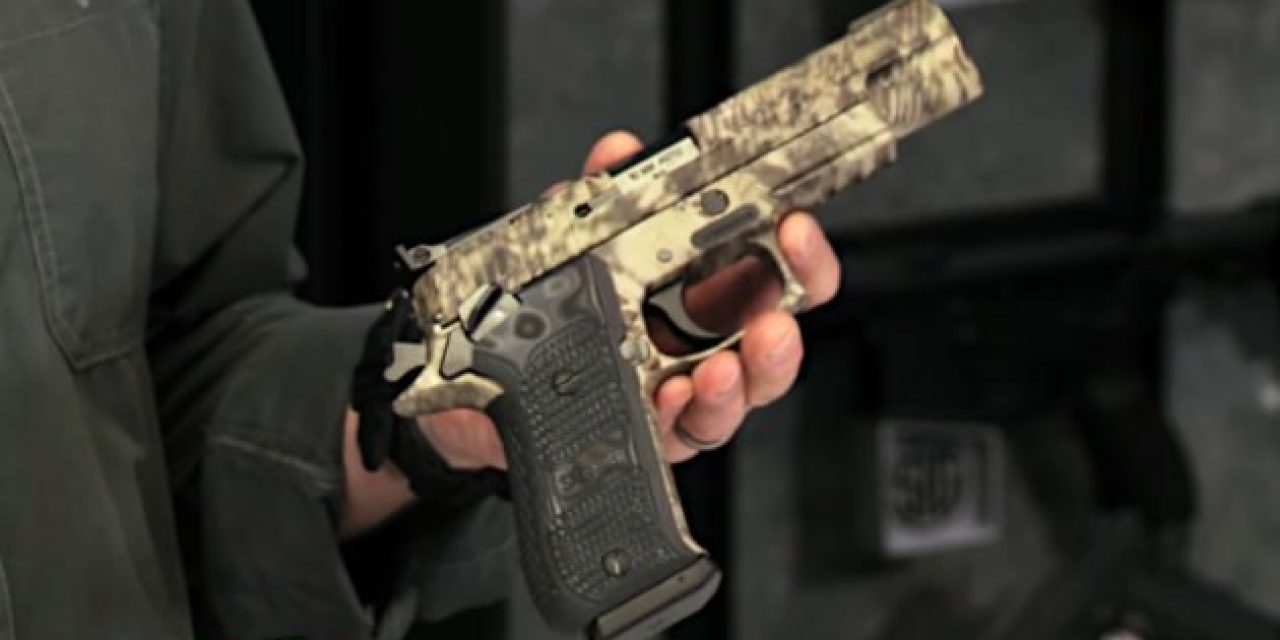 The 5 Best Performing Pistols