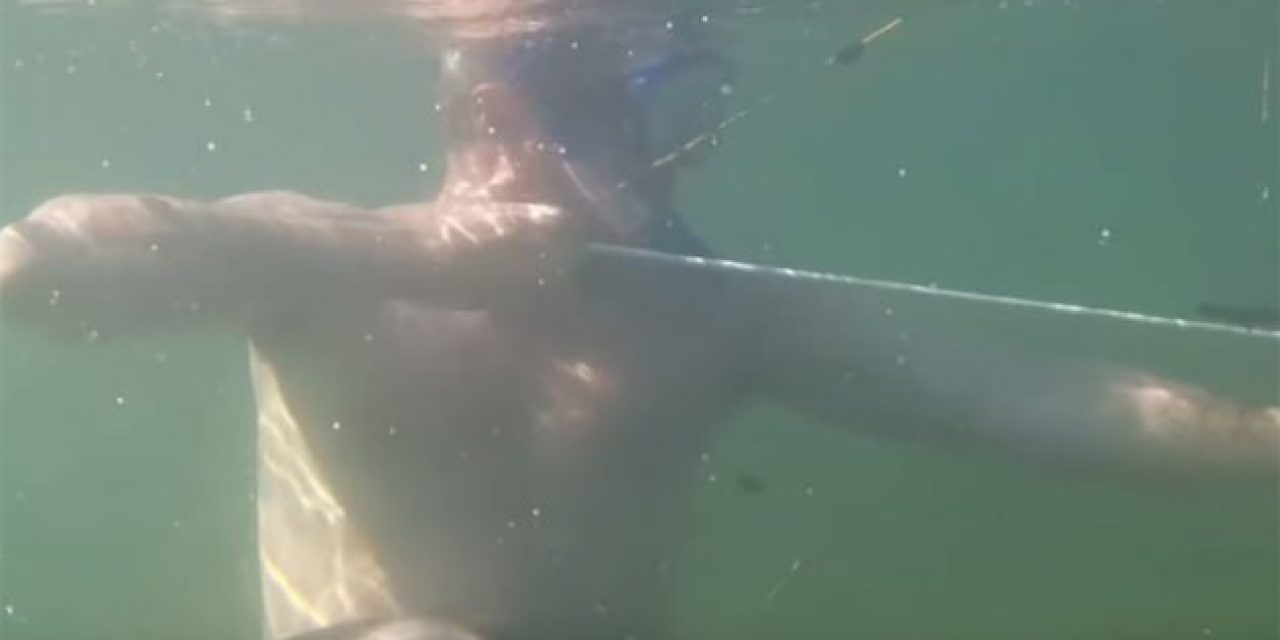 Video: So Apparently Underwater Bowfishing is Possible