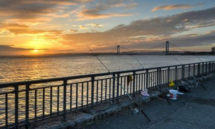 Fishing in New York: What to Know Before You Go
