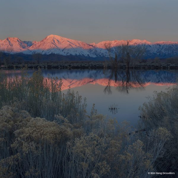 "Today's Photo Of The Day is ""Beginning"" by Kim Hang Dessoliers. Location: Bishop, California."
