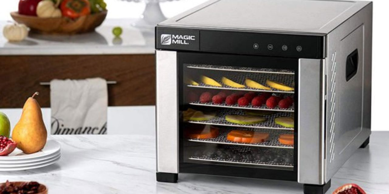 Preserve Food for Your Next Trip With One of the Best Food Dehydrators