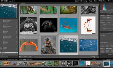 reCOMPOSE Podcast 060: Lightroom Tips With Katrin Eismann