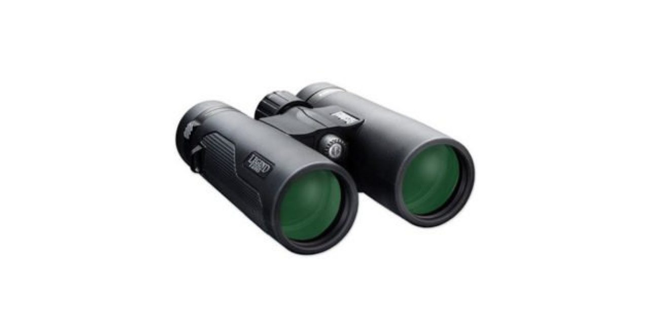 The Best Pair of Binoculars at Walmart, Chosen By Customer Review