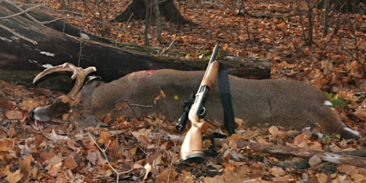 The Legalities, Trends, and Efficacy of Deer Hunting with Shotguns