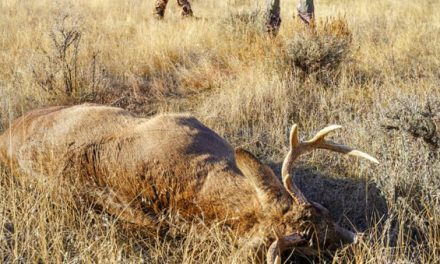 What's in It for the Rest? A Guide to the Great Things About Hunting for Those Who Don't Do It