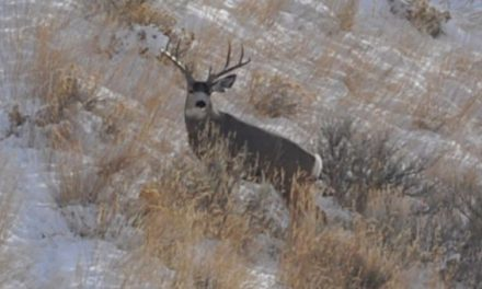 5 Big Things You May Have Forgotten as Hunting Season Approaches