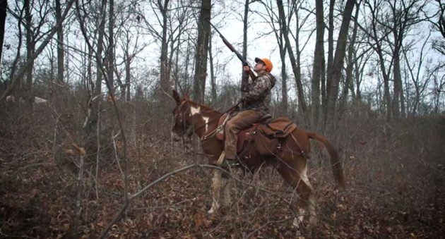 clay newcomb squirrel hunting